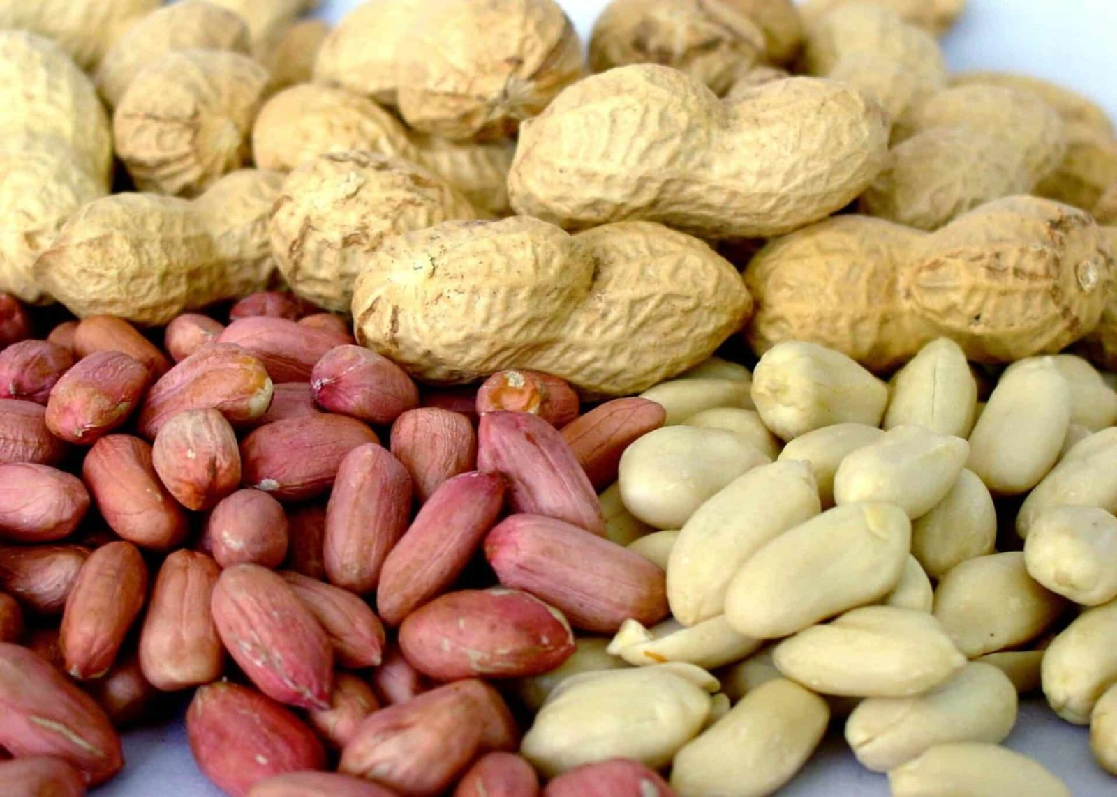Свойства арахиса