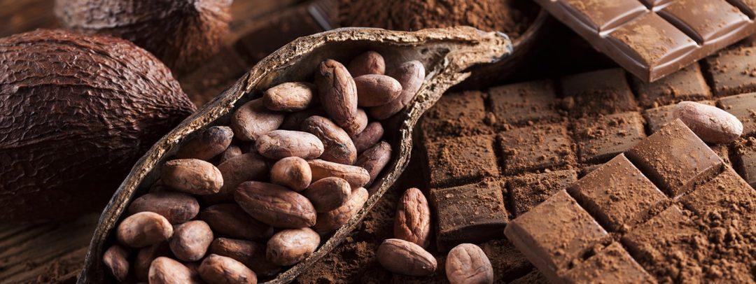 Польза какао бобов