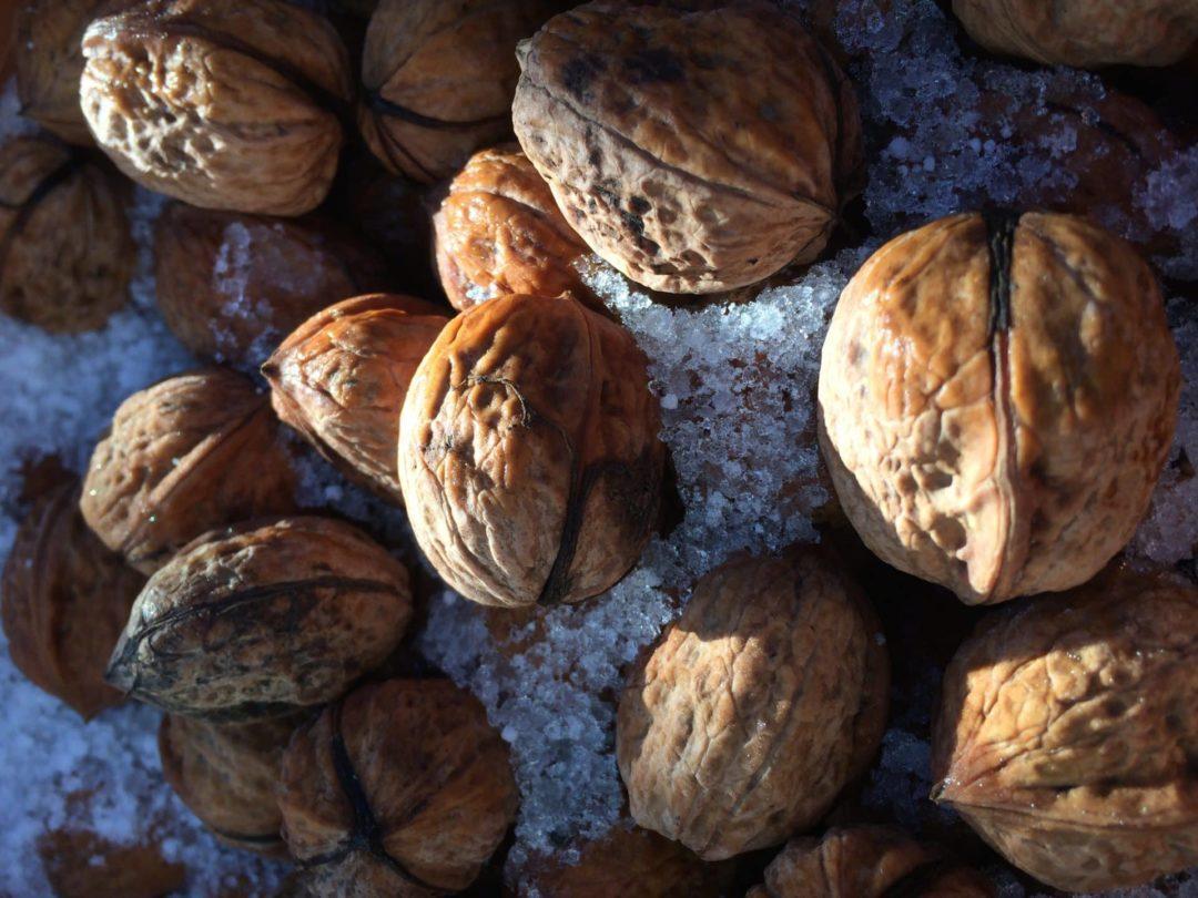 Грецкий орех зимой