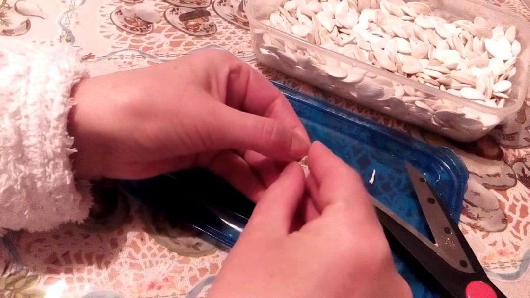 Очистка тыквенных семян от кожуры