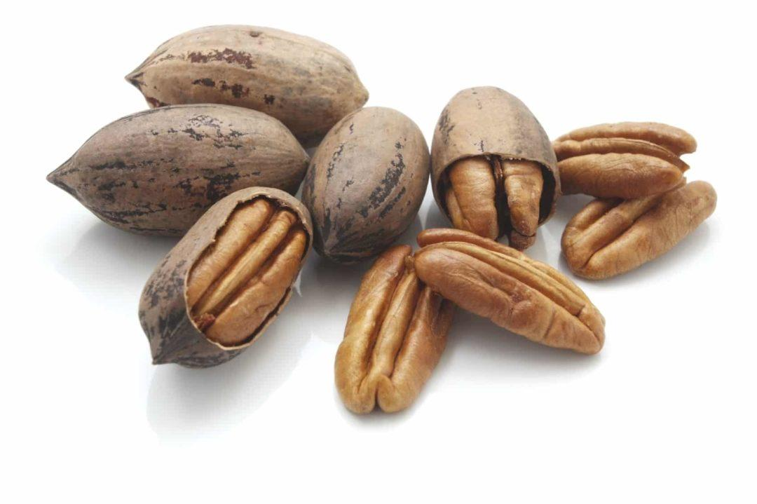 Орехи пекан в скорлупе