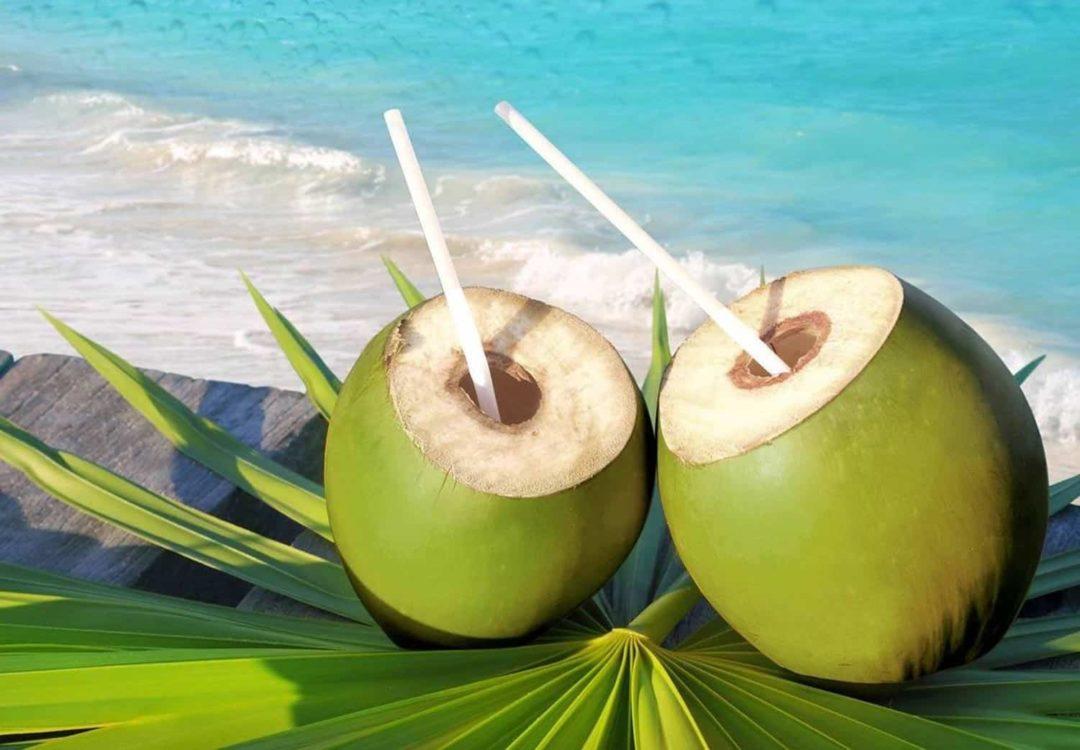 Зеленые кокосы для питья
