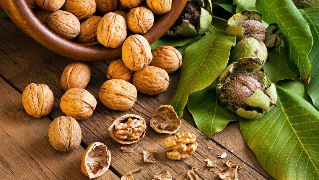 Грецкие орехи россыпью