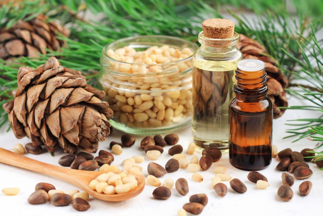 Кедровое масло в народной медицине