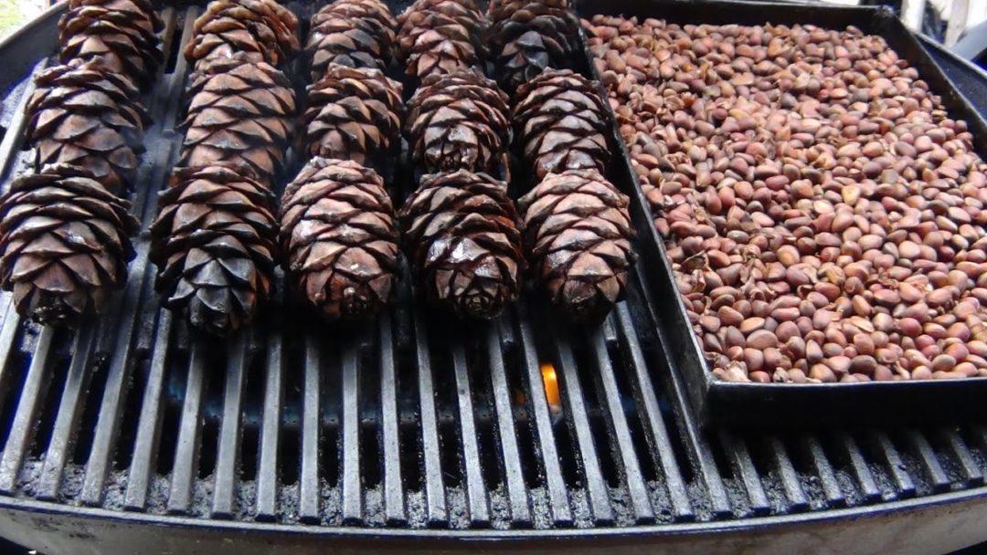 Кедровые орешки и шишки