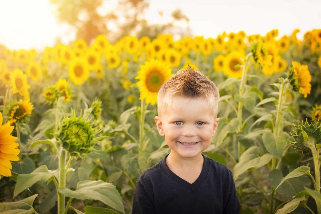Дети и семена подсолнуха