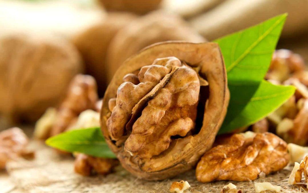 Методы сушки грецкого ореха