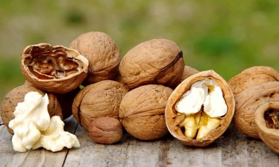 Как влияют грецкие орехи на организм человека
