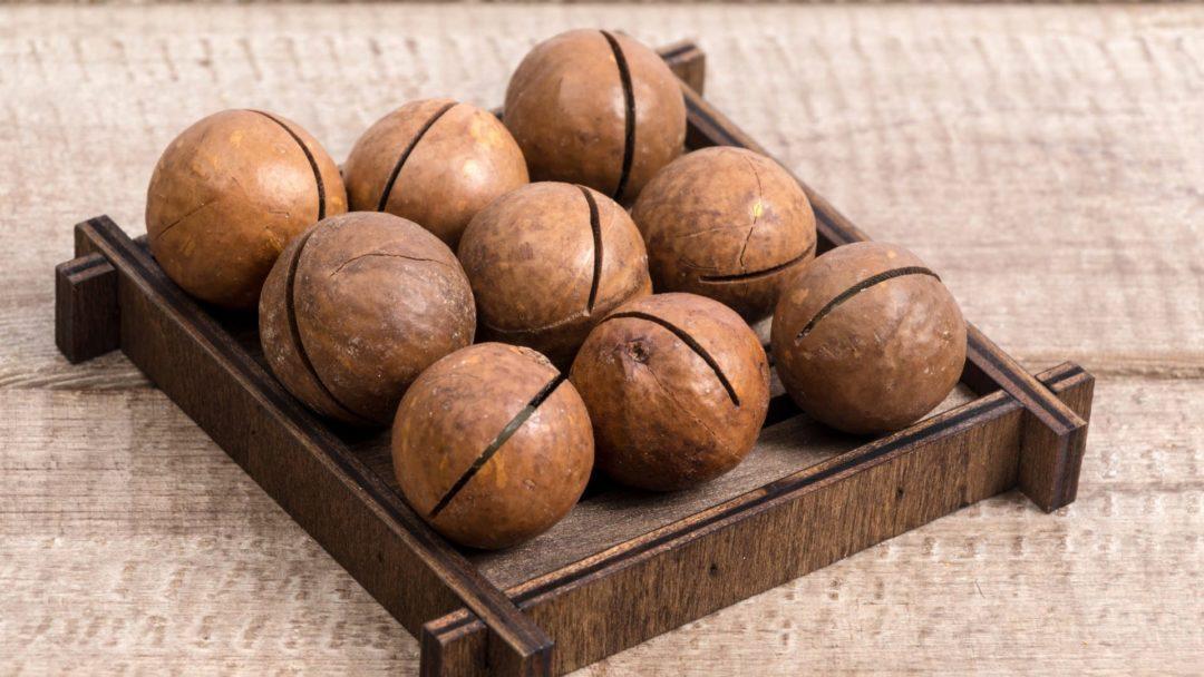 Настойка на скорлупе макадамского ореха