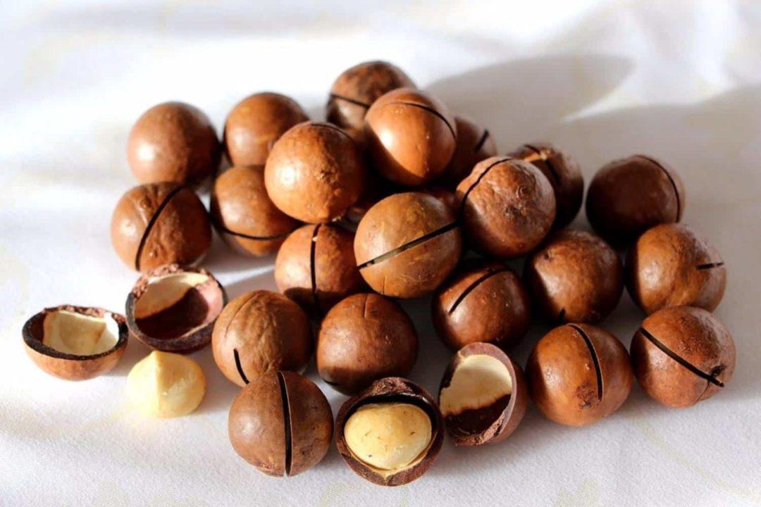 Макадамия орех польза и вред: секреты ореха №1